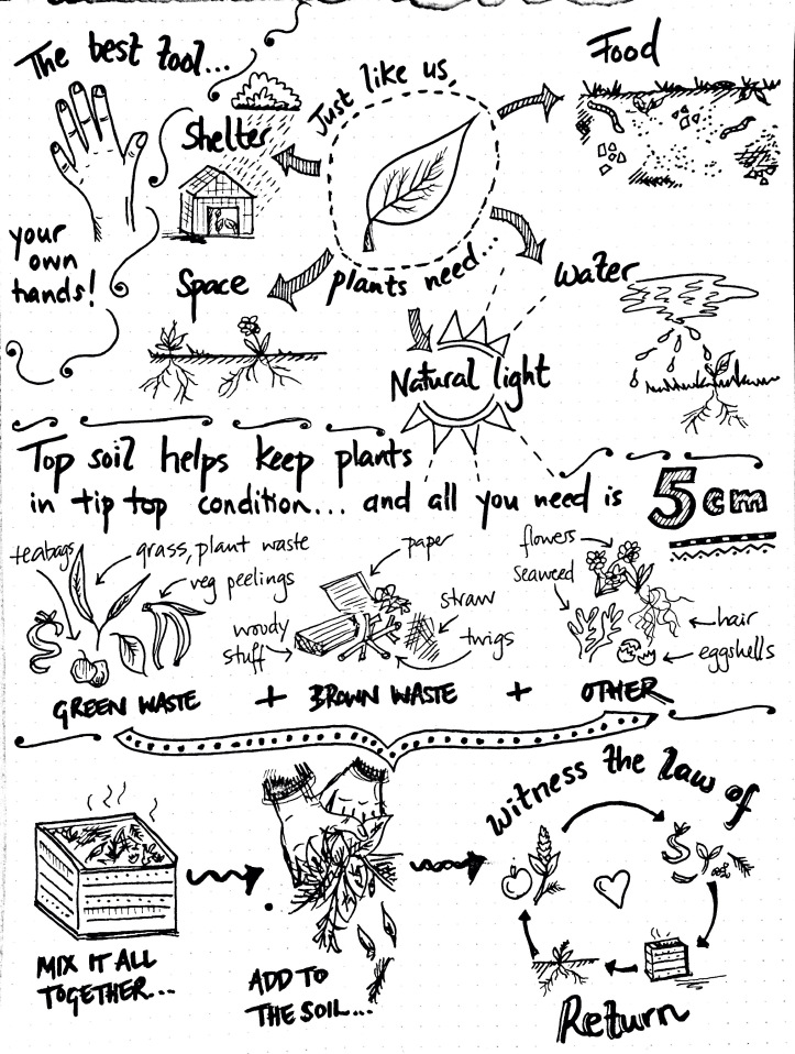 alice holden do grow infographic