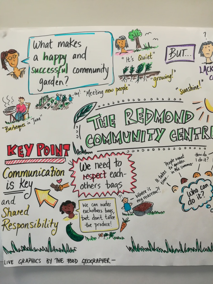 redmond community centre graphic recording