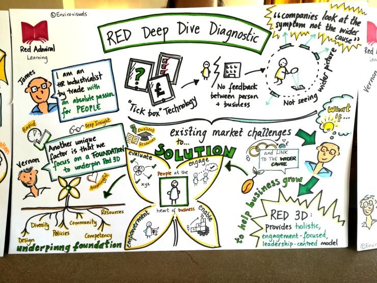 RED Deep dive diagnostics, red admiral